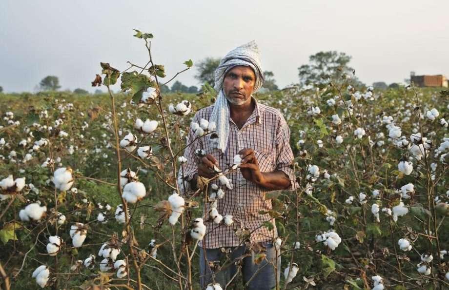 indian farmer sanna conscious concept