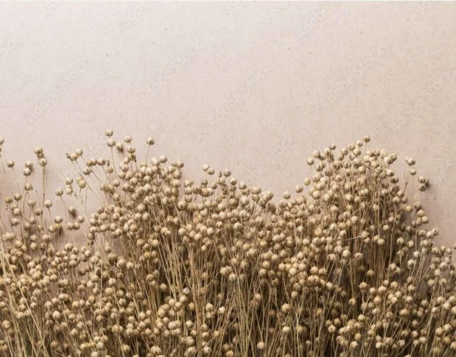 linen archive 8 biodegradables fabrics sanna conscious concept