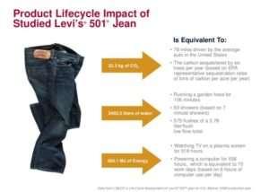 schema regarding the lifecycle of a pair of jean sanna conscious concept