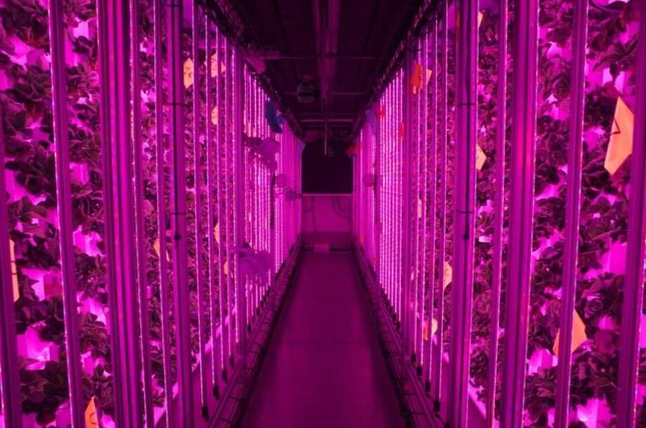 agricool paris sanna conscious concept