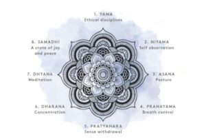 les 8 branches du yoga expliquées archive sanna conscious concept